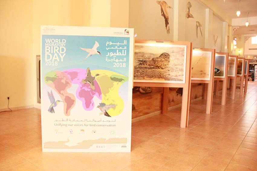 World Migratory Bird Day - © Dubai Municipality