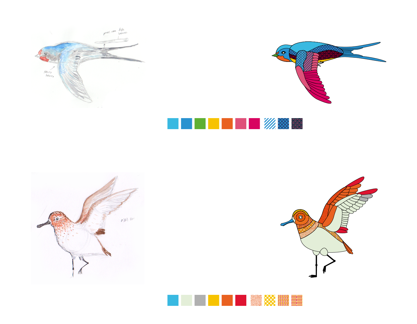Bird Elements from the World Migratory Bird Day Trailer 2017