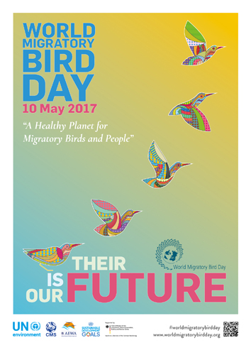 World Migratory Bird Day 2017 Poster