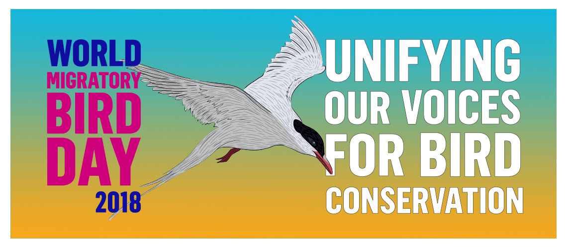 World Migratory Bird Day Theme and Notes