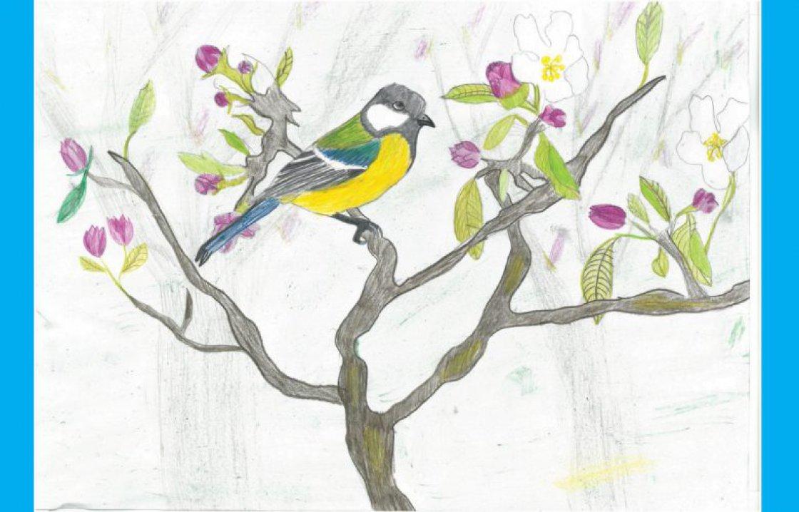 Cic Children Drawing Contest World Migratory Bird Day
